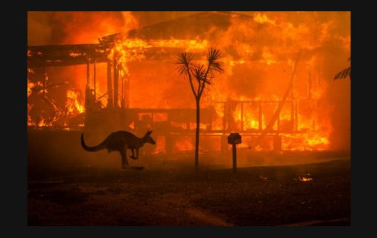 Avustralya Yangınları Neden Çıktı?
